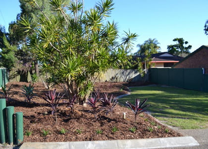 Mulching, planting, weed control & pruning service