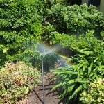 irrigated garden bed