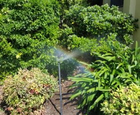 irrigated garden bed