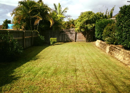 Yard clean-up, lawn mowing, edging & snipping service