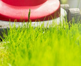 Lawn mower mowing lines