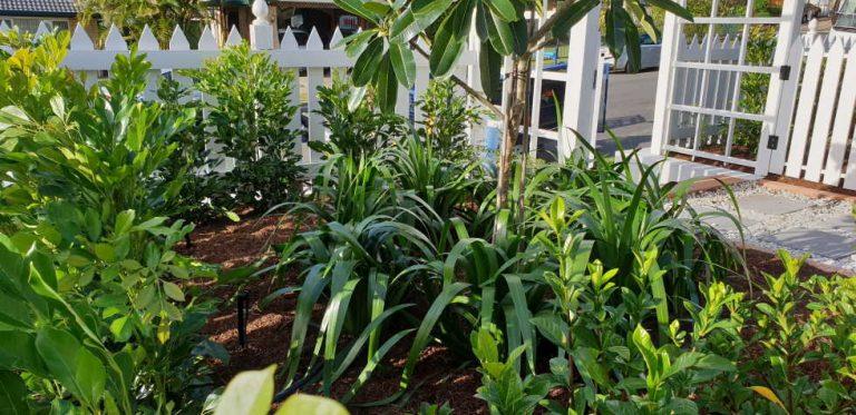 Irrigation installation complete