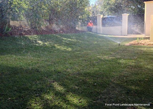 Turf installation & irrigation service