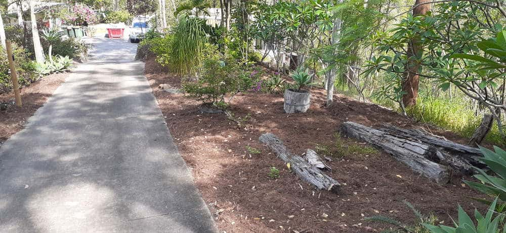 weeded and mulched
