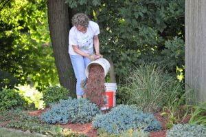 mulching prevents weeds
